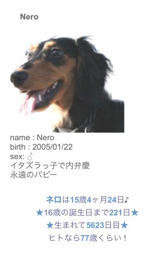 200621a.jpg